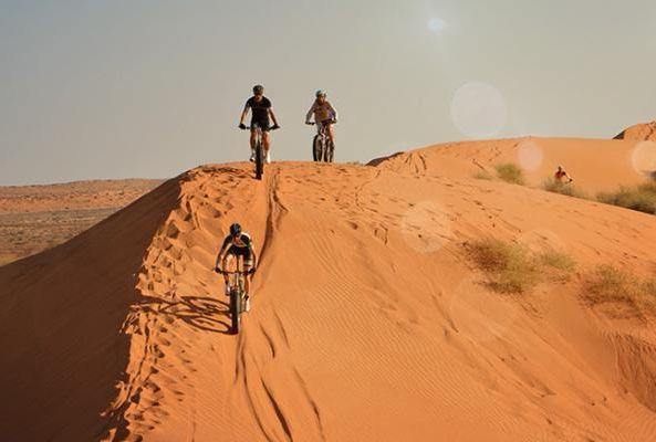 катание на фэтбайке в пустыне